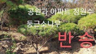 반송-신라조경농원