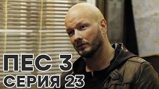 Сериал ПЕС - 3 сезон - 23 серия - ВСЕ СЕРИИ смотреть онлайн | СЕРИАЛЫ ICTV
