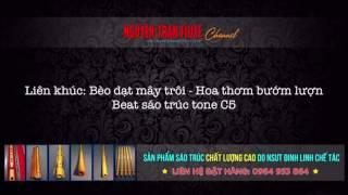 LK BÈO DẠT MÂY TRÔI - HOA THƠM BƯỚM LƯỢN - Beat Tone C