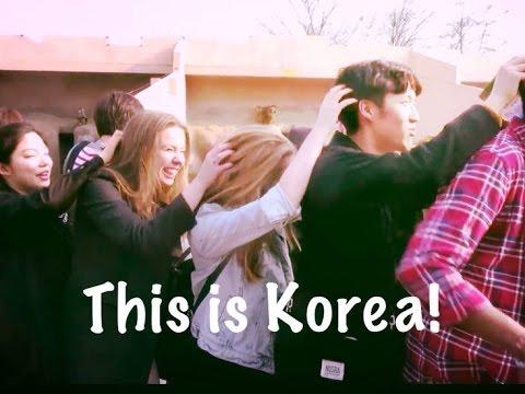 Korea is amazing!!!!!!