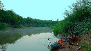 Рыбалка с ночевкой Осенний фидер Река Самара