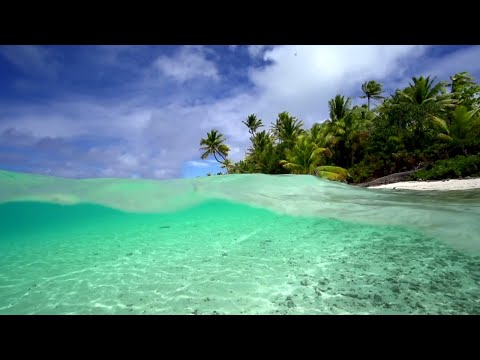 """Tropical Weightlessness"" 1 HR Nature Video + Calming Acoustic Guitar Music For Relaxation - Tahiti"