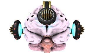 Baixar Brain-Computer Interfaces