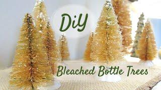 DIY BLEACHED BOTTLE BRUSH TREES   Quick + Easy!