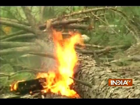 Uttarakhand forest fires: Three NDRF teams deployed to douse the flames