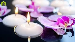 """Positive Transformation"" Meditation Music, Positive Energy Healing Vibration, Relax Mind Body"