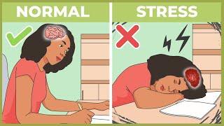 Seberapa Stres Kamu ? Inilah Dampak Stres Pada Tubuh!