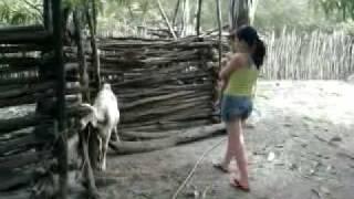 Matando A Cabra