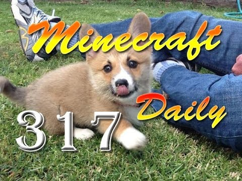 Minecraft Daily! Part 317; ft. SlyFox, Steven, and Danz! - HORSE MONEY