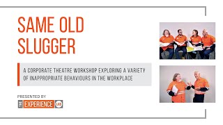 Same Old Slugger - Appropriate Workplace Behaviours, Inclusion and Unconscious Bias in the Workplace