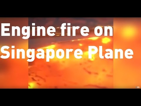 Amateur footage captures Singapore Airlines engine fire