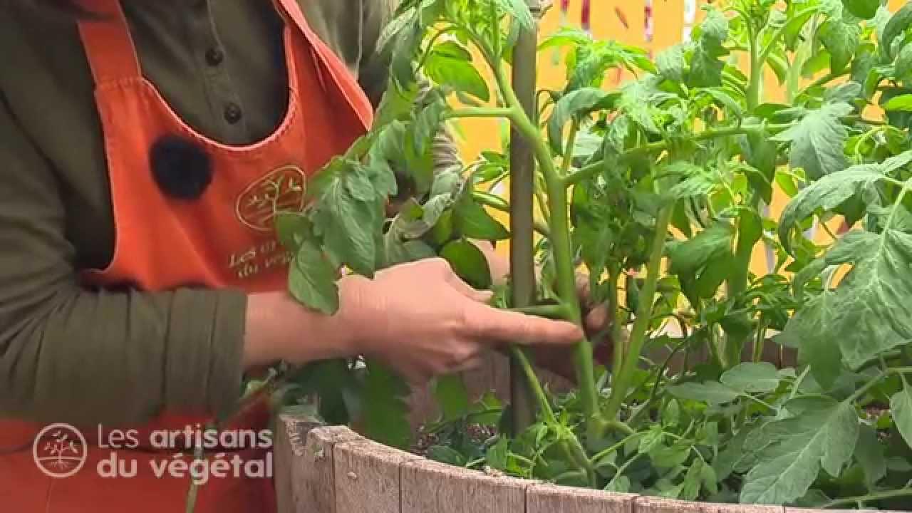 La Chaine de Jardinage des Artisans du Végétal - YouTube