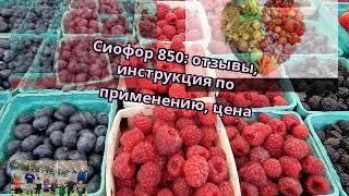 Сиофор 850: отзывы, инструкция по применению, цена