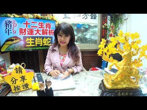 林海陽 2019 ﹝太歲冲生肖蛇財運]20181128