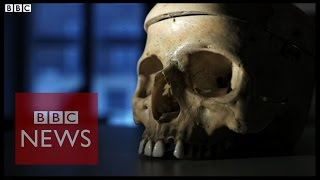 First Human Discovered In Ethiopia - የመጀመሪያው የሰው ዘር በኢትዮጵያ ተገኘ