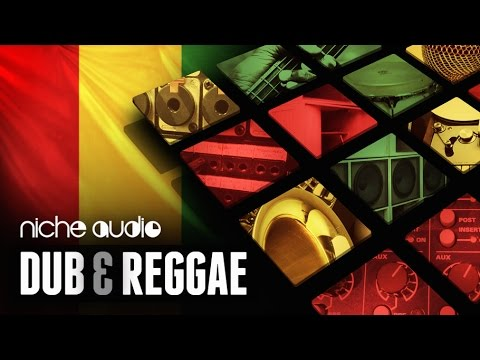 Dub & Reggae Expansion Pack For Maschine, Ableton & Logic - From Niche Audio