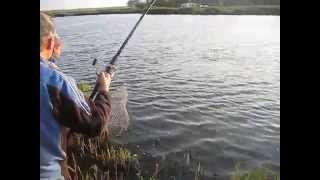 Рыбалка в Запорожье 2013(вываживание амура 6,5 кг).