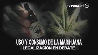 Baixar Legalización del consumo de la marihuana con fines medicinales en debate