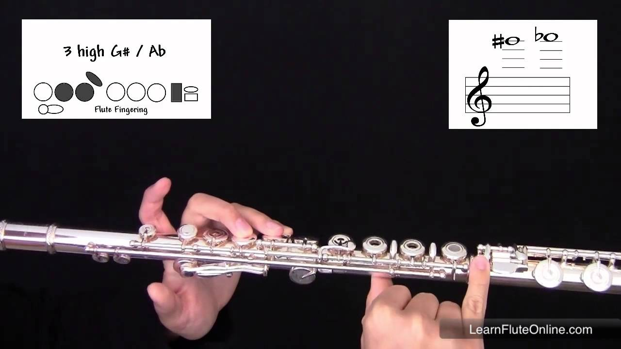 How To Play The Note A flat or G sharp Ab/G# on flute: Learn Flute Online