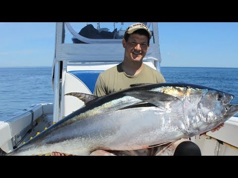 How To Catch Bluefin Tuna | Part 1: The Catch