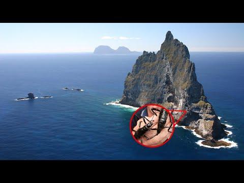 No Creerás lo que Encontraron OCULTO en esta Extraña Isla