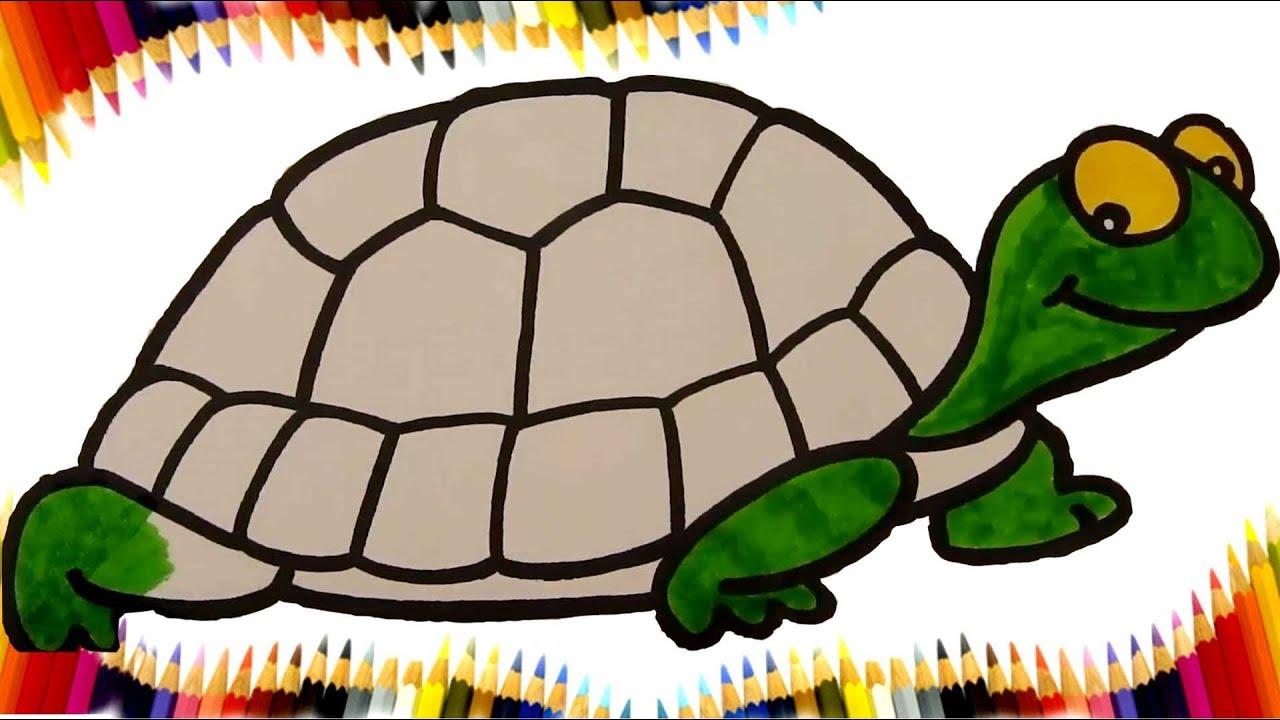 Kaplumbağa Boyama Sayfası Kaplumbağa Boyama Kinder Welt Ds