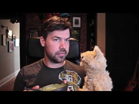 This cat is NED Episode 9  Ned vs  Cat Food