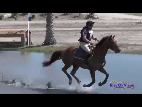 349XC Jeff Goodwin on Pendleton Novice Horse Cross Country Galway Downs April 2016