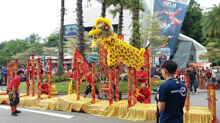 Singapore Tian Eng Lion Leaping on High Pole performances at Sentosa on 5/2/19 CNY Day 1