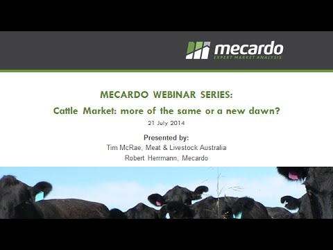 Mecardo webinar: The Cattle Market - more of the same or a new dawn?