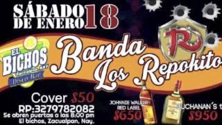 Banda los originales repokitos en ELBICHOS Zacualpan nayarit sabado 18 de enero 2014