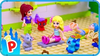 Cover images ♥ LEGO Aurora Goes to PET YOGA for a Relax Therapy
