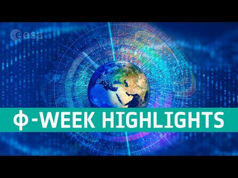 -week 2019 highlights