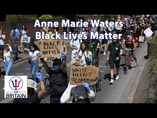 Black Lives Matter // Anne Marie Waters // For Britain