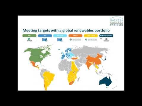 Webinar: Understanding Global Renewable Energy Options for Business