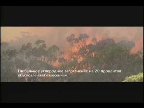 Fragile Planet by Sting - Russian subtitles