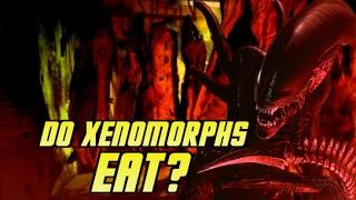 Do Xenomorphs Eat? - Explained