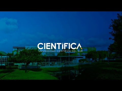 Canal N: Armando Vélez, docente de la Científica habla sobre El Niño Costero
