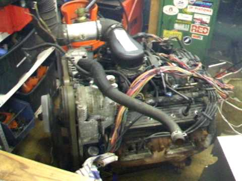 1996 chevy vortec 5700 (l31) stand alone wiring first run youtube buick engine wiring harness 1996 chevy vortec 5700 (l31) stand alone wiring first run