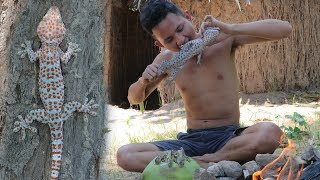 Primitive Technology : Find food Gecko ( Lizard ) In forest - Cooking Gecko with Coconut