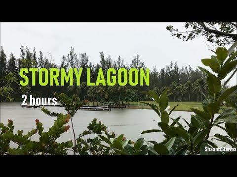 Cold Rainy Day At The Lagoon - Rain Sounds for Sleep