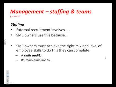 Critical Issues in Business Success &/or Failure - Management  - staffing and teams