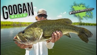 He Caught His BIGGEST FISH EVER out of NOWHERE + (Super Rare Catch)