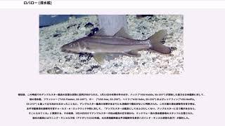 ロバロー (潜水艦)