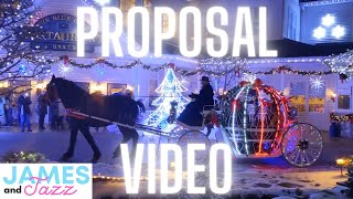 James and Jazz Proposal Video || Engagement Gone Right || Proposal Gone Right || Flash Mob Dance