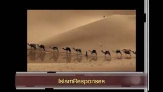 Video Sirah19B/Hassling Quraish caravans/P2/2 download MP3, 3GP, MP4, WEBM, AVI, FLV November 2018