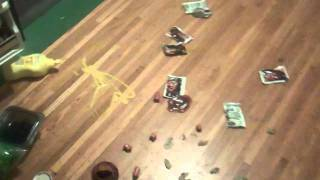 Saucesquatch # 2 - A BOLD ENCOUNTER
