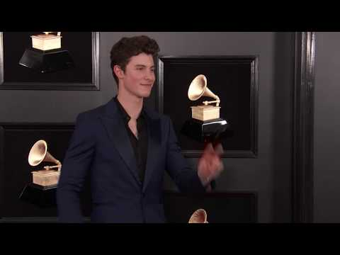 Shawn Mendes On The Red Carpet | 2019 GRAMMYs