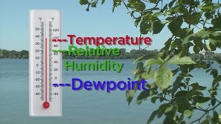 Good Question: What Is The Dew Point?