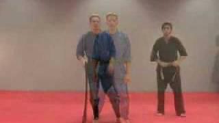 Rick Tew Side Roll Ninja training
